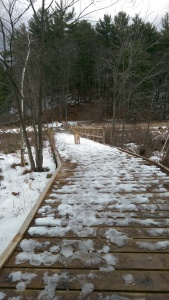3rd bridge at Rush Pond Way Trail.