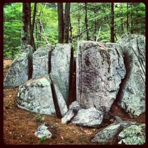 Pine Meadow Conservation Land, Ayer, MA